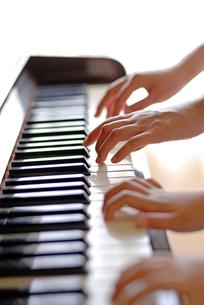 ピアノを弾く母子の手の写真素材 [FYI03850979]