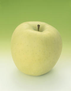 林檎の写真素材 [FYI03851164]
