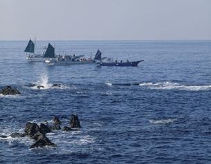 海を進む3隻の釣り舟 三浦海岸 神奈川県の写真素材 [FYI03851453]