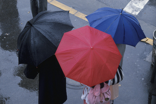 傘を差す人物の通勤風景(赤・黒・青)の写真素材 [FYI03851646]