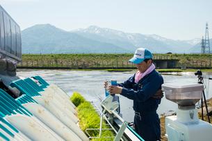 稲を健やかに保つ農薬の添加の写真素材 [FYI03851909]