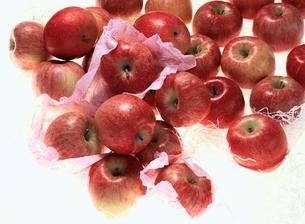 リンゴ(富士)の写真素材 [FYI03853146]