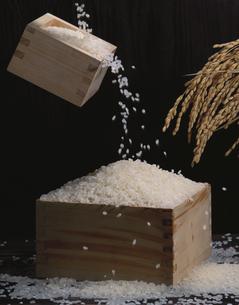 ますに注がれる米の写真素材 [FYI03853198]