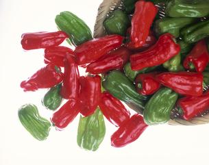 笊からこぼれるピーマン(赤・緑色)の写真素材 [FYI03853221]