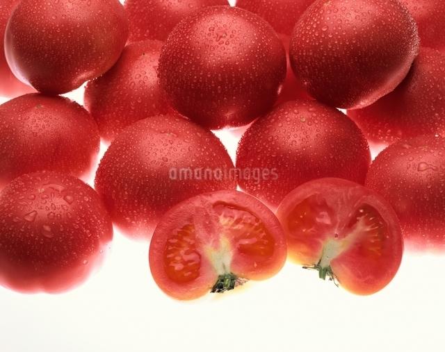 トマトの写真素材 [FYI03853264]