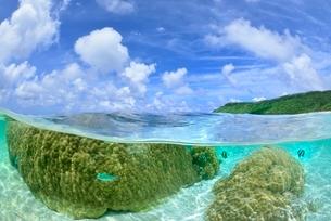 半水面の宮古島の海の写真素材 [FYI03853647]