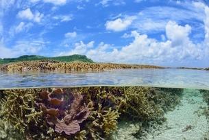 半水面の宮古島の海の写真素材 [FYI03853649]