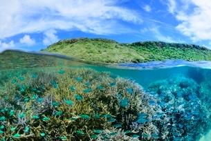 半水面の宮古島の海の写真素材 [FYI03853650]