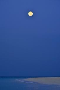 渚と月光の写真素材 [FYI03853845]
