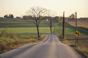 田園地帯のカーブした道 ペンシルバニア アメリカの写真素材 [FYI03853941]