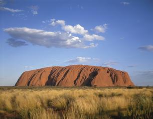 エアーズロック ノーザンテリトリー オーストラリアの写真素材 [FYI03853998]