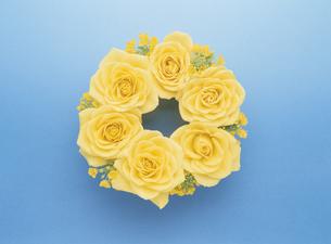 黄色いバラのフラワーリースの写真素材 [FYI03854128]