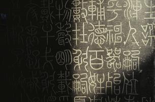 碑林  陜西省博物館 西安 中国の写真素材 [FYI03854161]