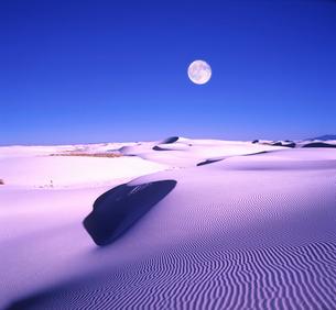 砂丘と月の写真素材 [FYI03855091]