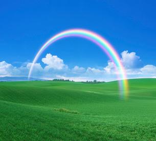 虹と草原の写真素材 [FYI03855100]