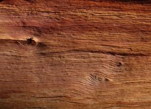 木目の年輪の写真素材 [FYI03855176]