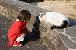 赤い服の女の子と猫の写真素材 [FYI03855452]
