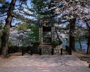 花咲く太宰治の碑   芦野公園 青森県の写真素材 [FYI03855716]