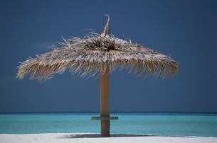 ビーチパラソルと海    モルジブの写真素材 [FYI03855761]