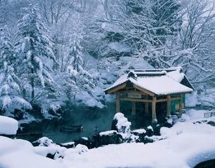 冬の宝川温泉 露天風呂 群馬県の写真素材 [FYI03855802]