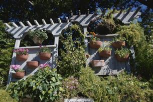花壇と鉢植えのある白いフェンス カメール アメリカの写真素材 [FYI03856663]