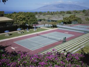 テニスコート  マウイ島 ハワイの写真素材 [FYI03856669]
