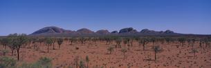 マウントオルガの全景 オーストラリアの写真素材 [FYI03856825]
