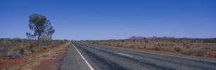 マウントオルガへの道 ウルル・カタチュタ国立公園の写真素材 [FYI03856826]