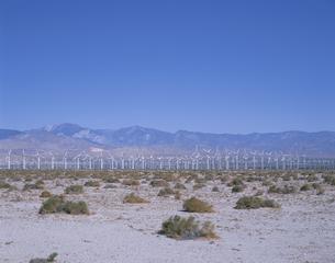 パーム・スプリングスの風車群 カリフォルニア州 アメリカの写真素材 [FYI03856972]