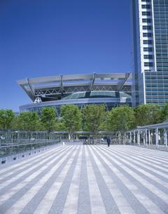 埼玉スーパーアリーナの新緑ケヤキ広場 埼玉の写真素材 [FYI03857143]