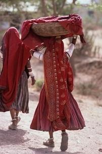 インド・女性の写真素材 [FYI03857378]