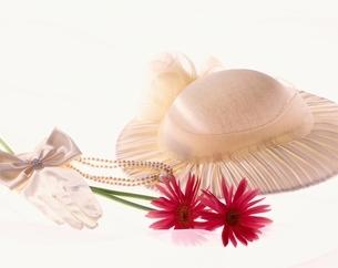 ガーベラの花と帽子の写真素材 [FYI03857763]