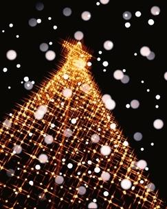 クリスマスツリーと雪の写真素材 [FYI03858036]