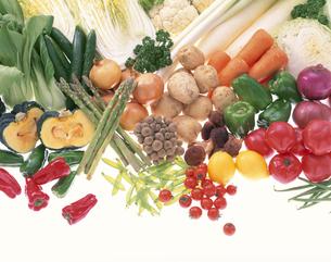 野菜の集合の写真素材 [FYI03858270]