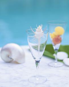 グラスに入った骨貝の写真素材 [FYI03858433]