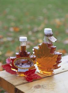 屋外のテーブルに置かれたメープルシロップ2瓶 カナダの写真素材 [FYI03858802]
