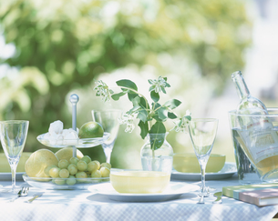 ガーデンランチ ワインと果物の写真素材 [FYI03858818]