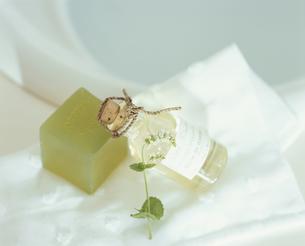 石鹸とマッサージオイルの写真素材 [FYI03858850]