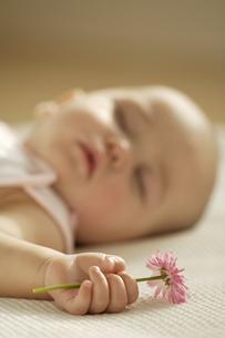 花を握って眠る赤ちゃんの写真素材 [FYI03859012]