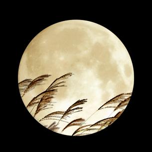 満月とススキの写真素材 [FYI03859177]