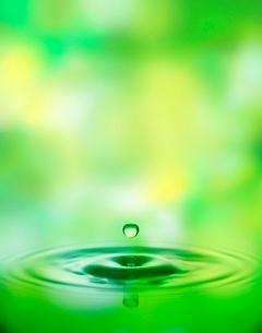 緑と波紋の写真素材 [FYI03859481]