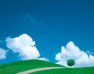 入道雲と丘と道の写真素材 [FYI03859545]
