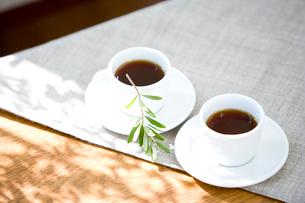 2つのコーヒーカップの写真素材 [FYI03859697]