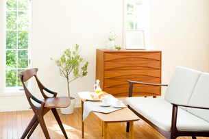 北欧家具のリビングの写真素材 [FYI03859700]