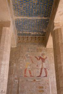 ハトシェプスト女王葬祭殿のホルス神の壁画の写真素材 [FYI03859782]