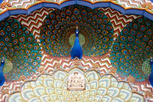 シティパレスのクジャクの装飾の写真素材 [FYI03860220]