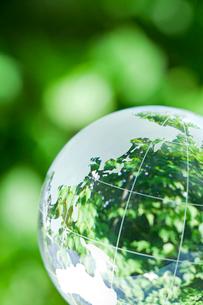 緑の映る地球儀の写真素材 [FYI03860457]