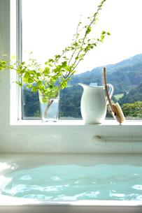 窓のあるバスルームの写真素材 [FYI03860539]