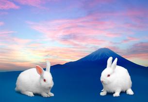 富士山とうさぎの写真素材 [FYI03860665]