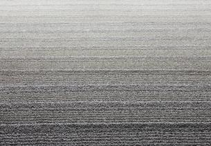 枯山水の写真素材 [FYI03860771]